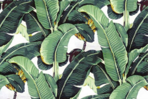Tropical wallpaper for one's home